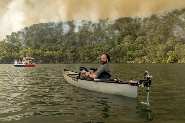Bushfires: the blame game