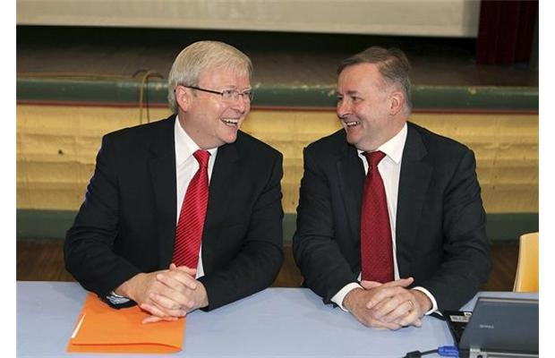 Albo elbows out competitors