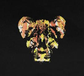 YOUNG LIONS – BURN