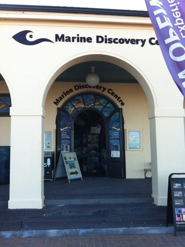Marine Discovery Centre swims away