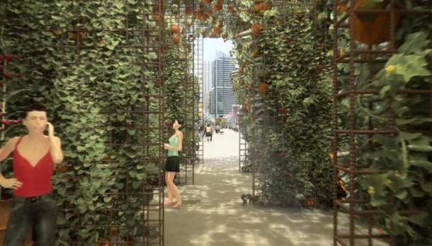 Uncertain future for Pyrmont Bridge compost garden
