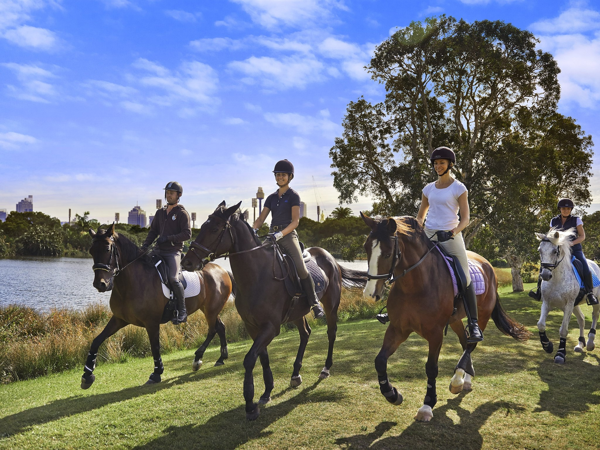 Rumours fly around future of Moore Park Stables