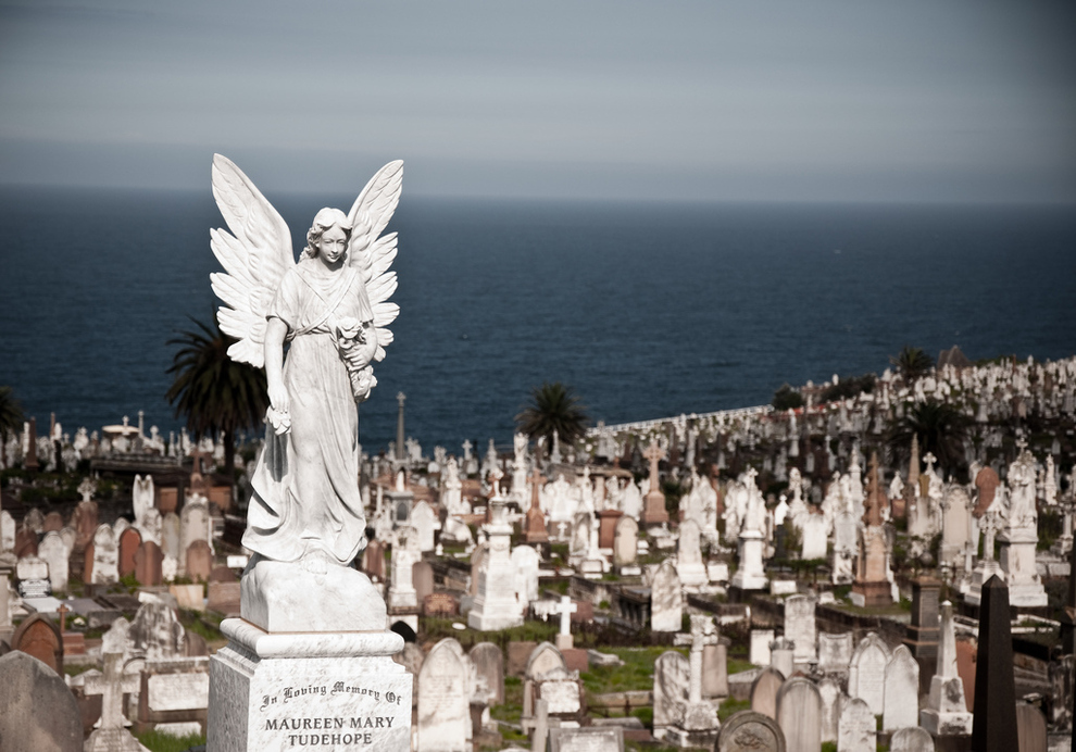 Waverley Cemetery finances cause for grave concern