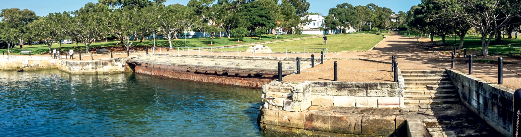 Trees to finally be trimmed in Balmain
