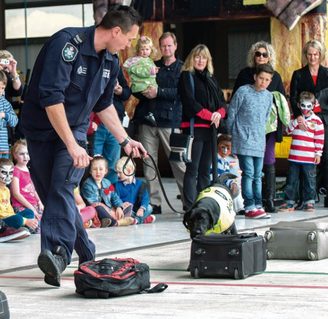 Sniffer dogs have had their day: experts, Greens