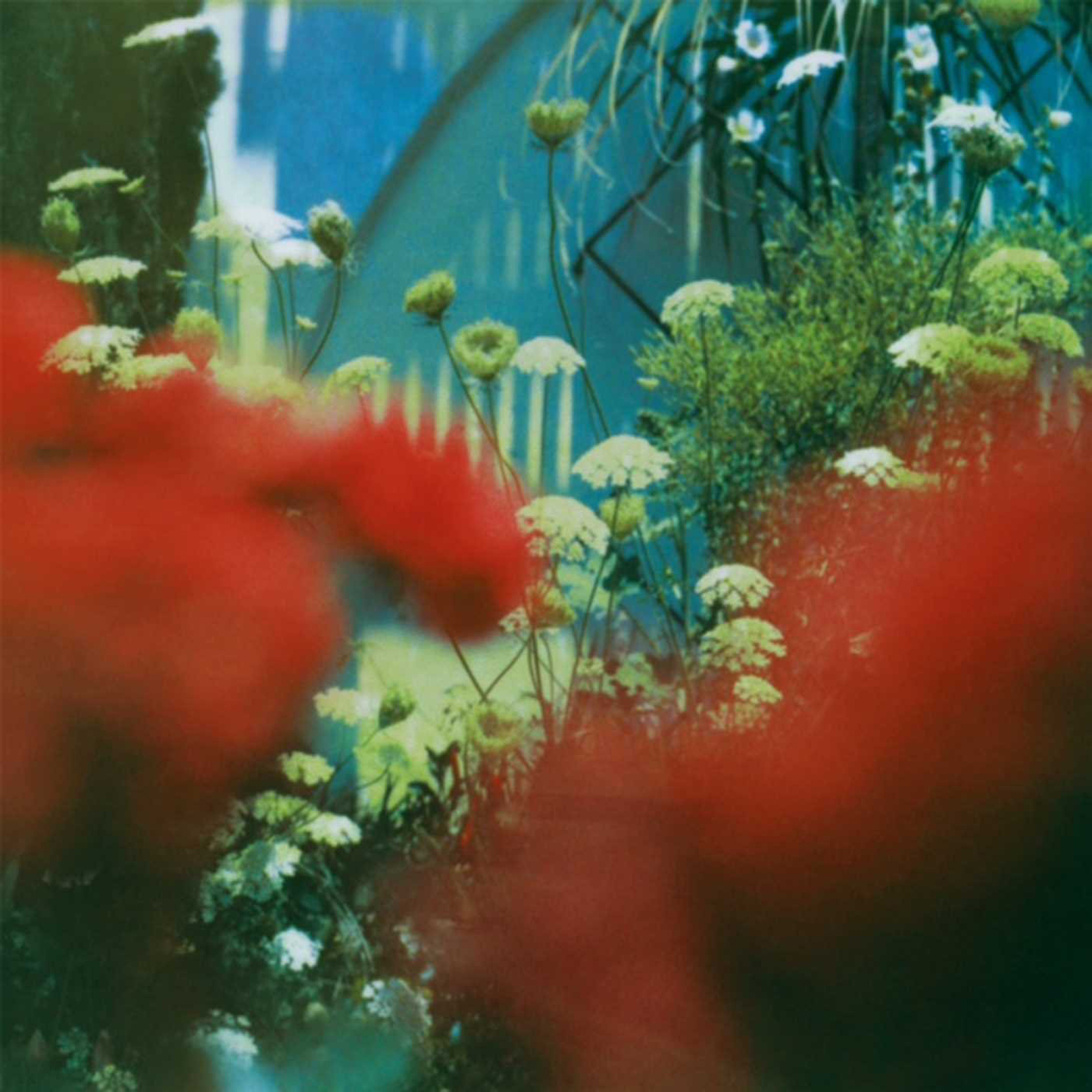 Pulled Apart By Horses – The Haze