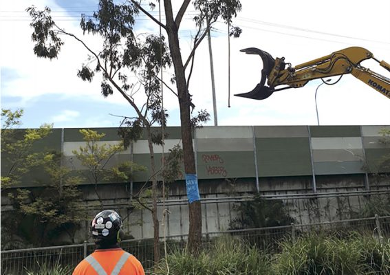 WestConnex takes its toll in Annandale