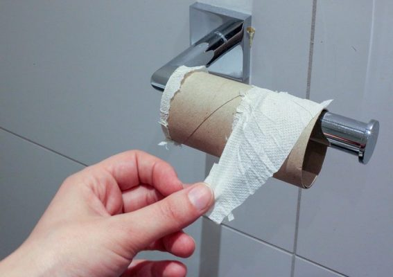 What To Do When You Need The Loo… And Have No Toilet Paper