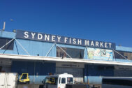Best Place to Buy Seafood – Sydney Fish Market
