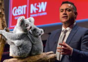 Marsupial madness in NSW coalition