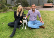 Alex Greenwich backs puppy farm prohibition