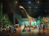Revamped Australian Museum to reopen next month