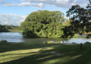 Clues to the missing trust in Greater Sydney Parklands