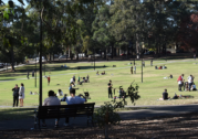 Promised potties undelivered at Newtown park