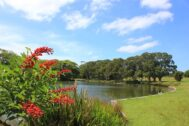 Momentum grows in Sydney against State Government's Parklands Exposure Bill